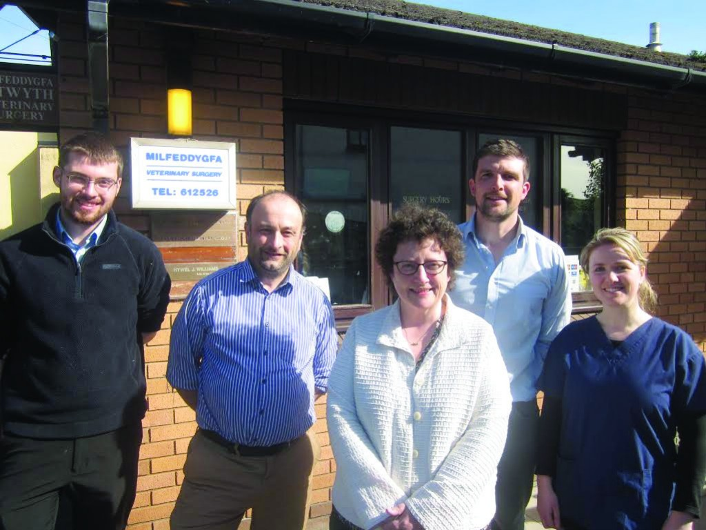 Campaigning for excellence: Elin Jones at Ystwyth Veterinary Practice